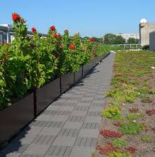 udc-green-roof